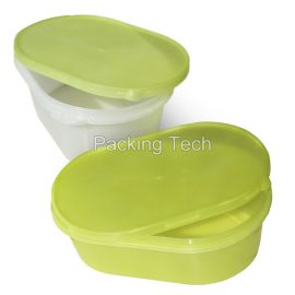 Injection Molding Plastic Ice Cream Box
